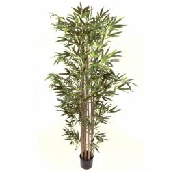 Planta exterior interior Bambú verde natural redondo 180 cm
